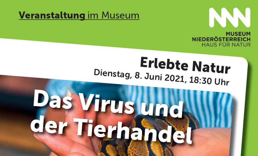 © Foto: Museum Niederösterreich